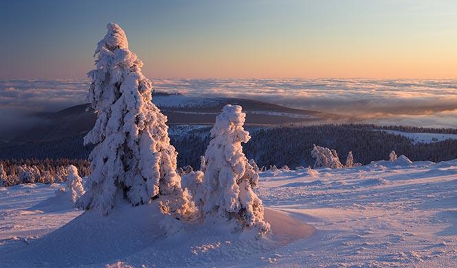 Harz, Erzgebirge oder Eifel